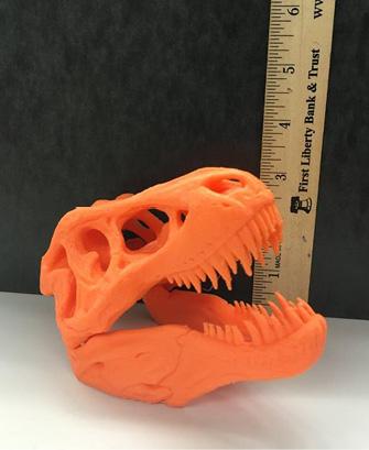 3-D printed Tyrannosaurus Rex skull.