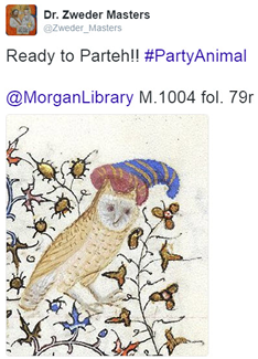 Owl tweet.