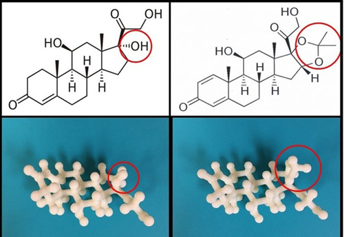 Figure 1. Two common topical pharmacological agents (Hydrocortisone, left; Desonide, right) that possess similar molecular structures. 3-D printed models of each drug allow students to better grasp the similarities and differences (circled in red) in these structures.