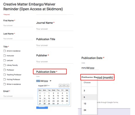 Figure 2: Embargo record fields in Google Forms.