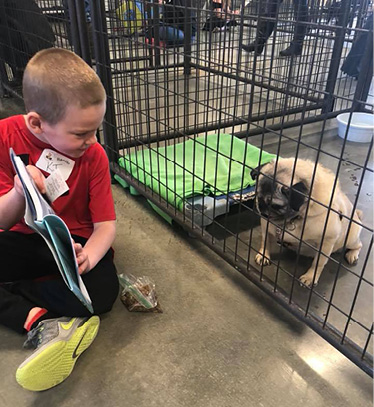 Young boy reading to a pug.