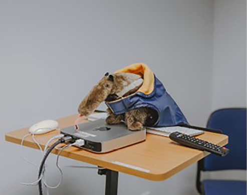 Peter the Anteater investigates high tech tools at the Multimedia Resource Center.
