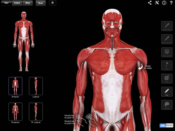 Body apps: iPads for undergrad Anatomy and Physiology